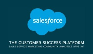 Salesforce The Customer Success Platform logo
